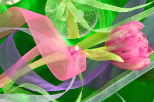 Organzabänder an Frischblumen